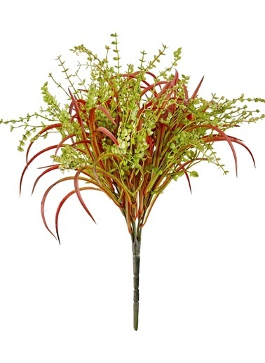 The Mia Fiorina Okaluptus Grass Yeşil Kırmızı Yeşil